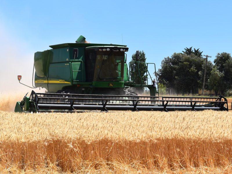 Rolniku, sprawdź, jak przygotować się do żniw