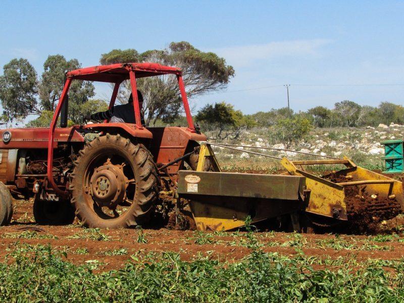 Maszyny do uprawy i zbioru ziemniaków