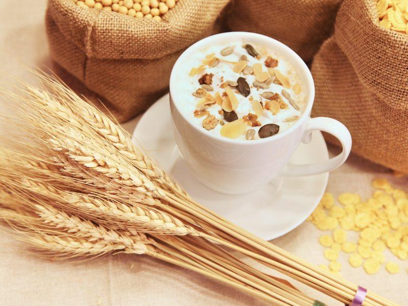 Najpopularniejsze rodzaje zbóż w polskich uprawach