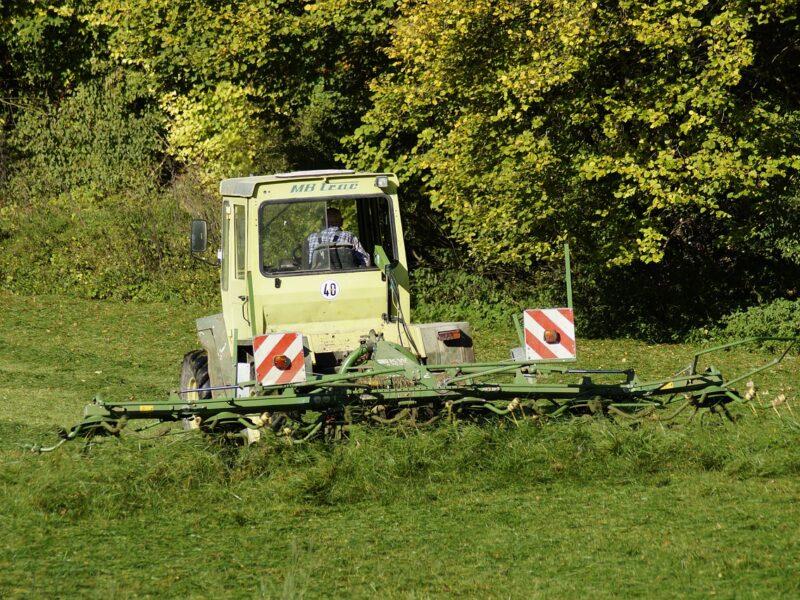 Zakup maszyny do zbioru zielonek - na co zwrócić uwagę?
